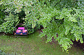 0- Samples of Natural Gardens