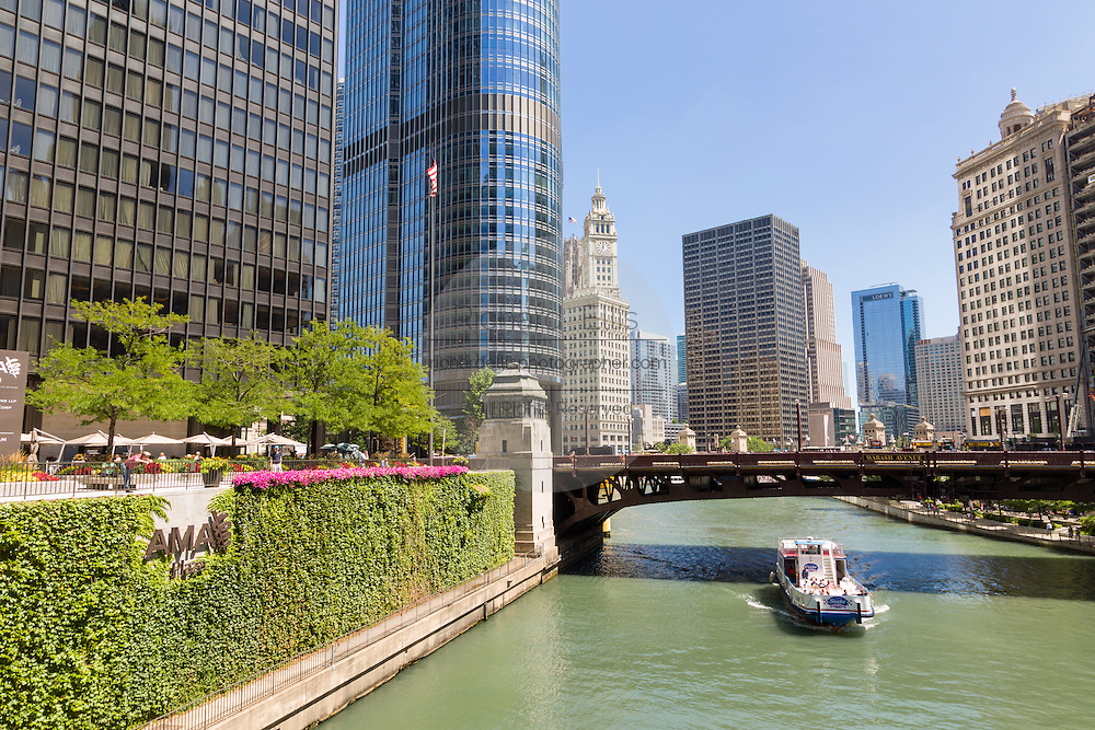 View of the Chicago River looking toward the Wabash Bridge and the Wrigley Building during summer in Chicago, Illinois, USA