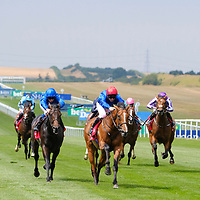 Newmarket 12th July