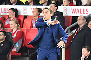England women's manager Phil Neville signalling during the FIFA Women's World Cup UEFA Qualifier match between England Ladies and Wales Women at the St Mary's Stadium, Southampton, England on 6 April 2018. Picture by Graham Hunt.