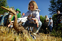 Jaron Figueroa, 9, releases a duck near a march Friday near Cataldo after it was banded by Idaho Fish and Game.