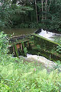 Kauai irrigation ditch<br />