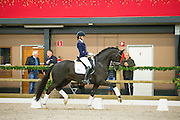 Marieke van der Putten - Four Legends KS<br /> ISAH KWPN Hengstencompetitie 2015/2016<br /> © DigiShots