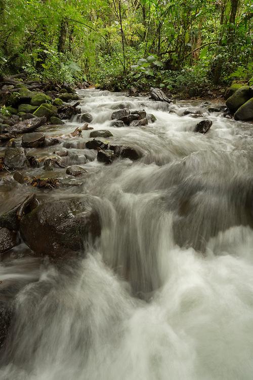 Stream, Costa Rica