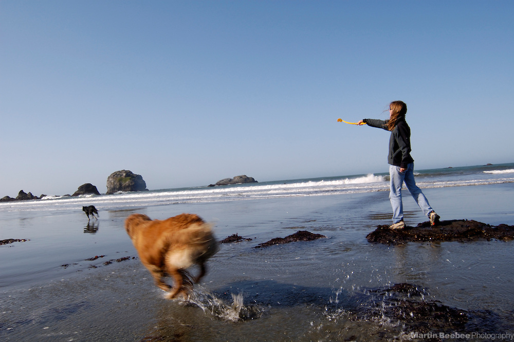 A woman plays with dogs on the beach in Crescent City, California