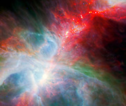 This new view of the Orion nebula highlights fledgling stars hidden in the gas and clouds. Spitzer.
