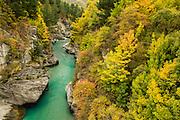 Shotover River in autumn, Queenstown, New Zealand