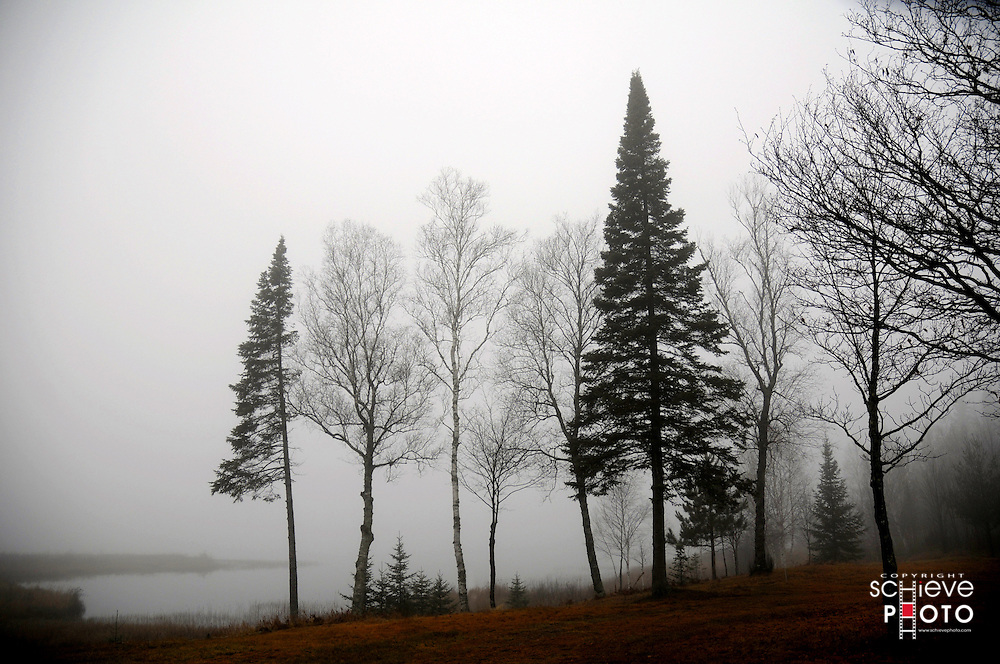 A foggy fall morning in northern Wisconsin.