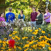 2016-10-06 Botany Club Flower Garden