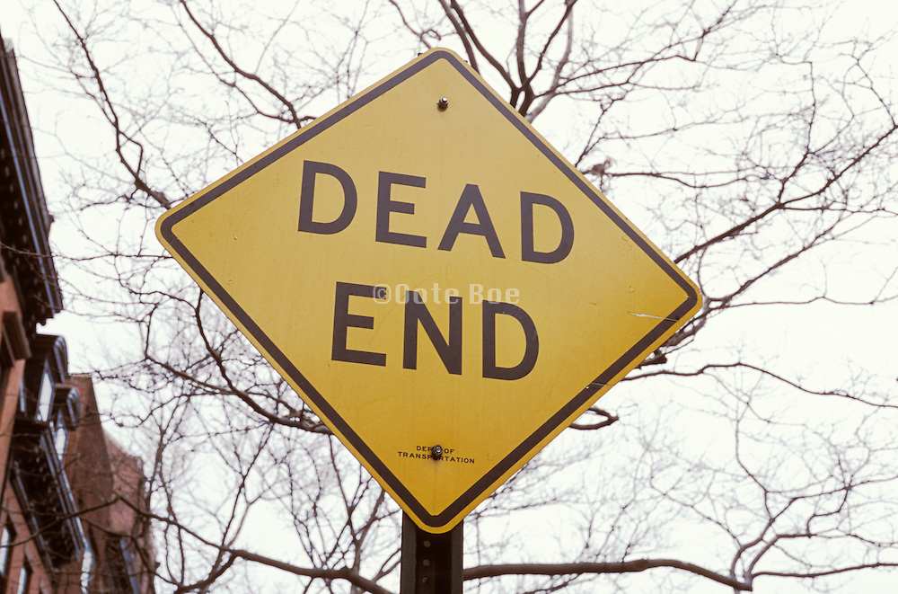 dead end sign against leafless tree branches