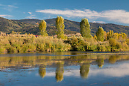Autumn colors are reflected in the Yampa River, just outside Steamboat Springs, Colorado.