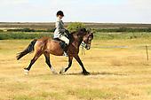 Class 24 - Ridden Horse - Any Type -