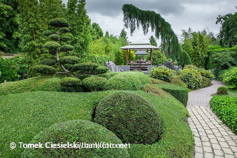 Stylisation of  the Japanese Garden