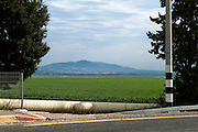 Israel, Jezreel Valley, mount Tabor in the background