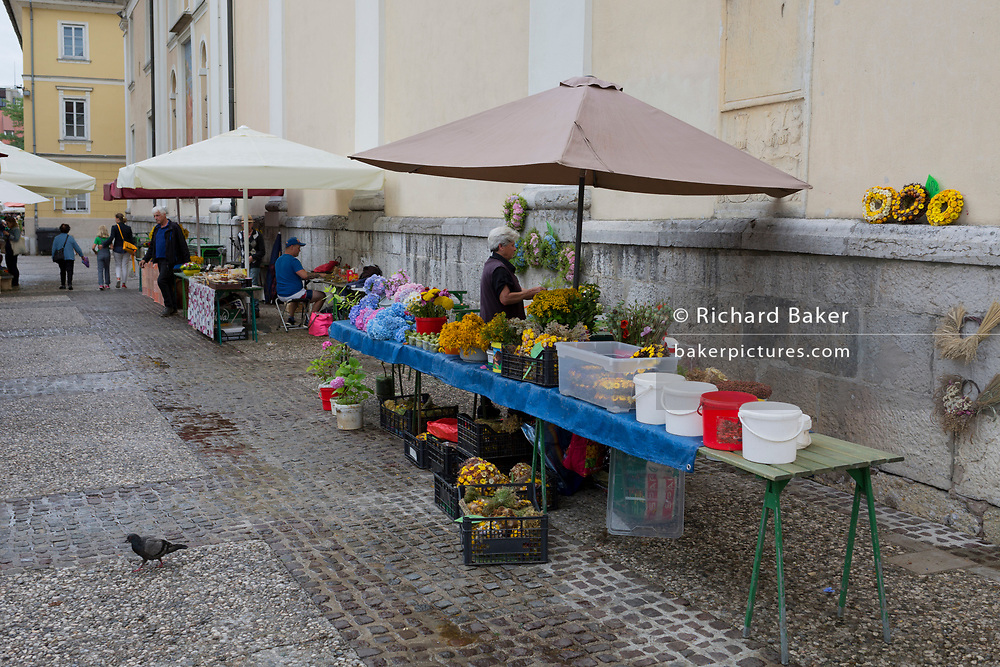 Flower stall at the small market outside St Nicholas Cathedral on Pogacarjev Square in the Slovenian capital, Ljubljana, on 28th June 2018, in Ljubljana, Slovenia.