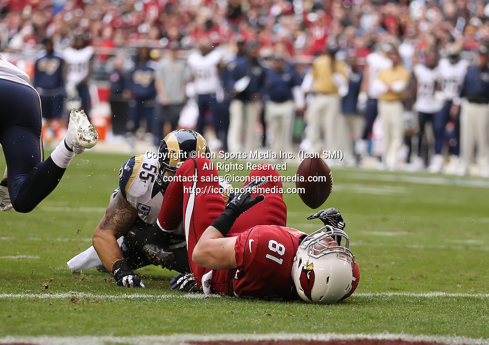 Dec 8 2013: Cardinals TE Jim Dray (81) fumbles the football on the 1 yard line during the Arizona Cardinals hosting the St. Louis Rams game in the University of Phoenix Stadium in Glendale, AZ.  The Cardinals defeat the Rams 30-10.