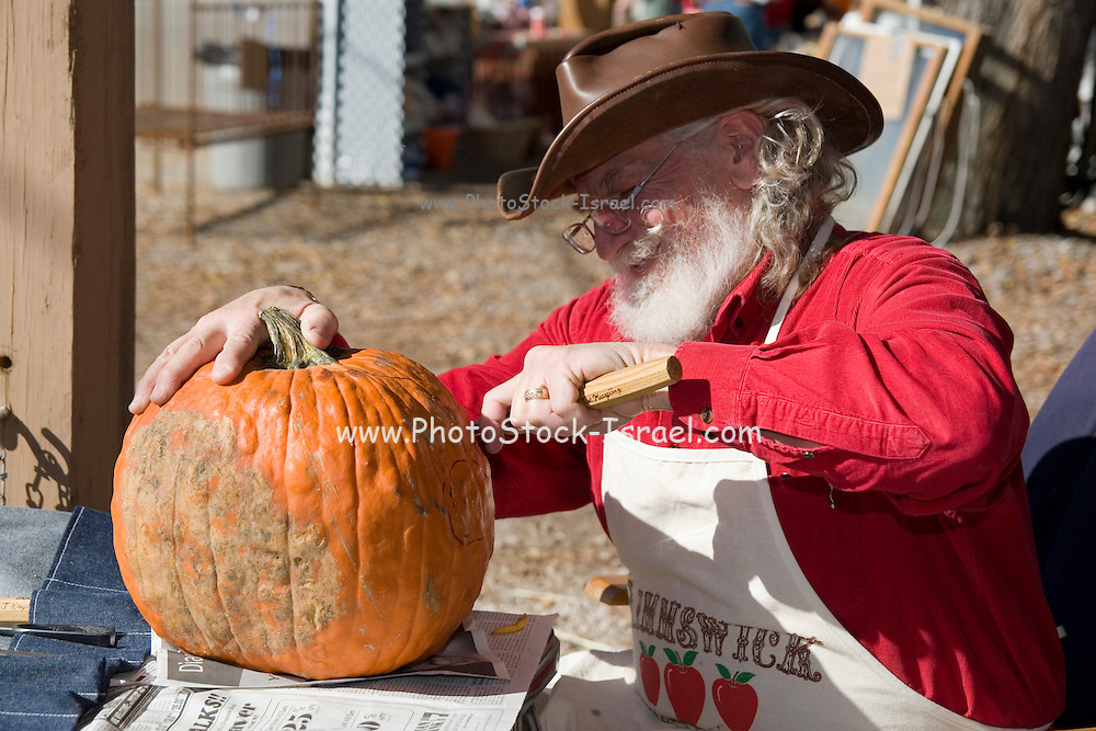Missouri MO USA, Carving pumpkins for Halloween, at the apple butter festival Kimmswick October 2006