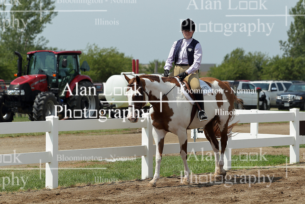 03 August 2017:  Horse and equine competition at 2017 McLean County Fair<br /> <br /> #alphoto513
