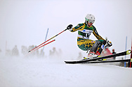 12 MAR 2011: Andreas Adde (12) of the University of Alaska - Anchorage competes in the men's slalom alpine race during the 2011 NCAA Men and Women's Division I Skiing Championship held Stowe Mountain Resort and Trapp Family Lodge in Stowe, VT.  Adde placed 22nd. ©Brett Wilhelm