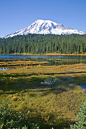 Mount Rainier, lakes and pine trees