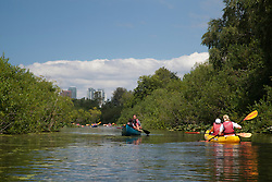 North America, United States, Washington, Bellevue, kayaking in Mercer Slough Nature Park