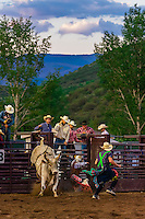 Bull riding, Snowmass Rodeo, Snowmass Village (Aspen), Colorado USA.