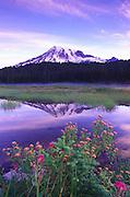 Image of Mount Rainier and Reflection Lake, Mount Rainier National Park, Washington, Pacific Northwest