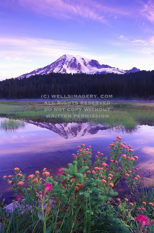 Image of Mount Rainier and Reflection Lake, Mount Rainier National Park, Washington, Pacific Northwest
