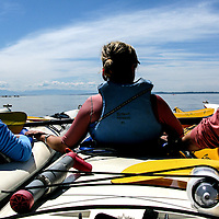 Kayakers try to find Orca Whales in the San Juan Islands, Washington