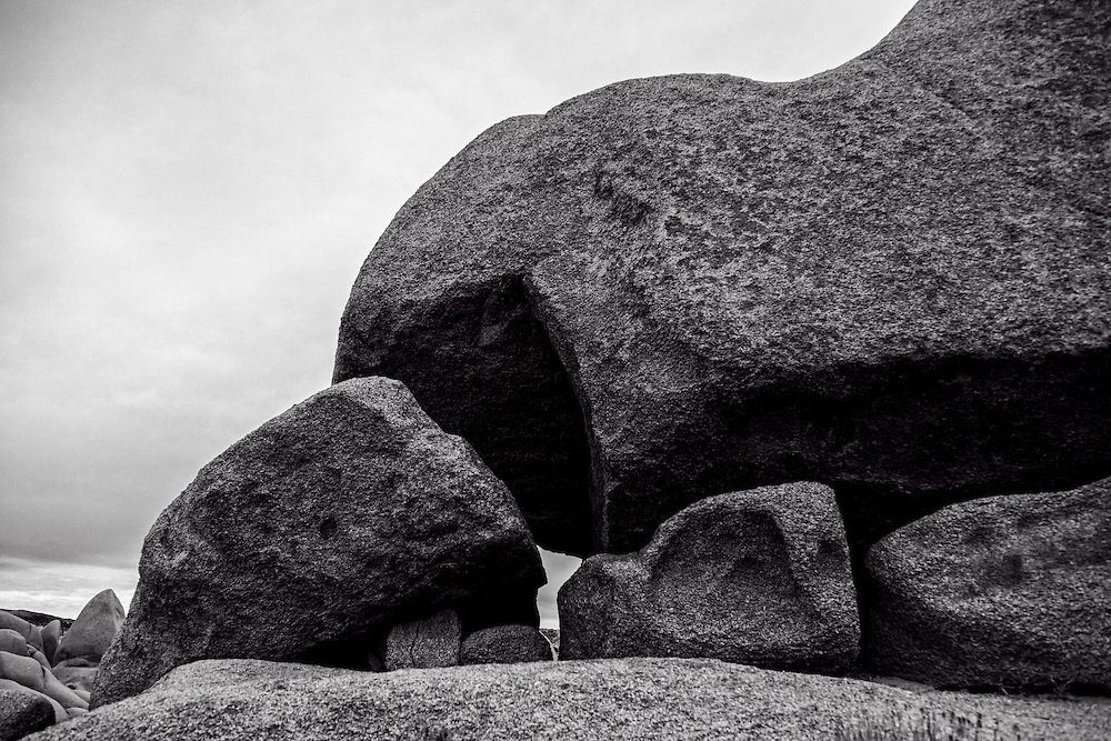 Photos of Joshua Tree National Park