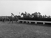 "Irish Distillers Grand National at Fairyhouse.  (M66)..1979..16.04.1979..04.16.1979..16th April 1979..The Irish Distillers Grand National was run today at Fairyhouse Racecourse, Co Meath.The race over 3.5miles is valued at £20,000. the winning trainer will also receive the Tom Dreaper,Perpetual Trophy which will be presented by Mrs Betty Dreaper..Image shows ""Credit Card ""leading no12 ""Delmoss"" and no19 ""Smiling Jim, clearing a hurdle during the race."