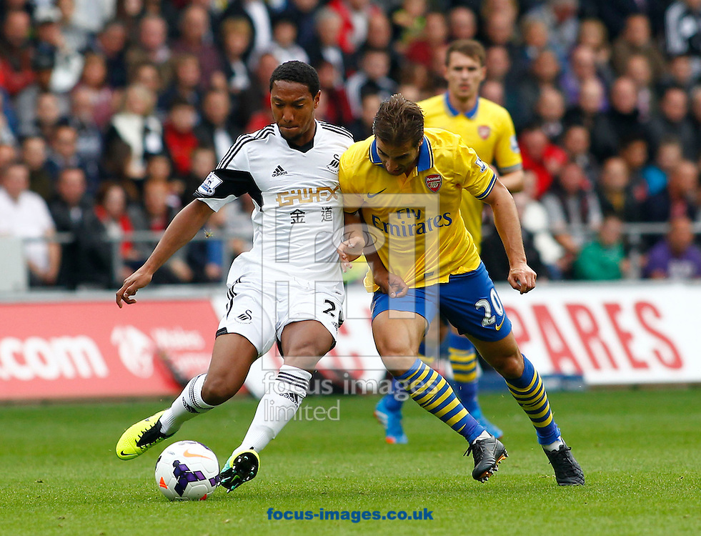 Picture by Mike  Griffiths/Focus Images Ltd +44 7766 223933<br /> 28/09/2013<br /> Jonathan De Guzman of Swansea City and Mathieu Flamini of Arsenal during the Barclays Premier League match at the Liberty Stadium, Swansea.