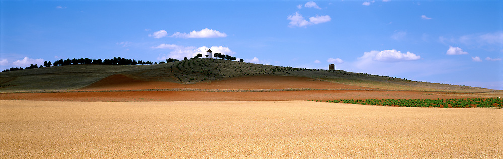 La Manca farm field with windmill