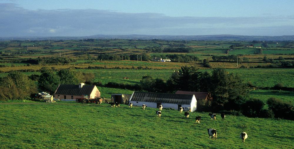 Irish farmhouse and fields, County Clare, Ireland