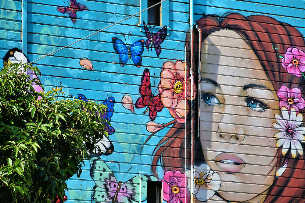Summerlove Mural by Amanda Lynn in San Francisco, California<br /> The summer of 1967 was called the &ldquo;Summer of Love&rdquo; when the Haight-Ashbury neighborhood was the epicenter for counterculture musicians such as the Grateful Dead, Janis Joplin, Crosby Stills and Nash plus the Jefferson Airplane.  Muralist Amanda Lynn painted this flowerchild tribute to that era on the side of Jimi Hendrix&rsquo;s former house.  It is appropriately called &ldquo;Summerlove.&rdquo;