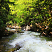 &quot;Let there be Light&quot;<br />