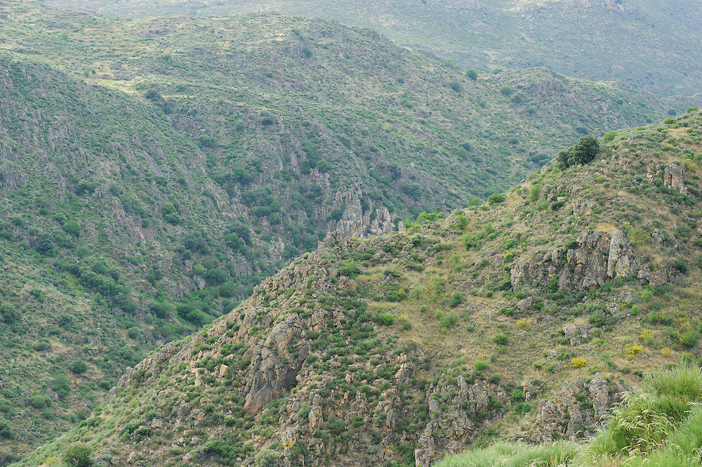 Faia Brava reserve, Côa valley,.Portugal