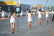 Nov 15-18, 2012: Grid girl...© Jamey Price/XPB.cc