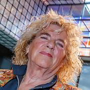 NLD/Hilversum/20181003 - Onthulling Mies Bouwman Totempaal, Gerti Bierenbroodspot