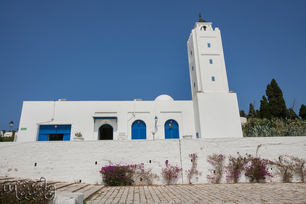 Traditional white and blue building against clear sky; Tunis; Tunisia