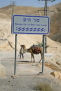 sea level sign on the road leading to the dead sea region