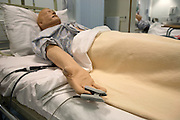 A 'Patient Simulator' is lying in on a bed at the ExPERT Centre, a new wing of the University of Portsmouth, on Wednesday, March 28, 2007, in Portsmouth, England. The 'Patient Simulators' can bleed, breathe, drool and even speak, and are being used by students at the state-of-the-art new training centre. They cost 270.000 USD each and are able to simulate all sort of acute conditions, including heart attacks. The 'Patient Simulators' are housed at a $9 million USD centre which opened few weeks ago. Students and professionals from different health-care disciplines simulates conditions to then act and provide the right treatment, while the 'patient' will react accordingly. www.port.ac.uk/expertcentre  **Italy Out**