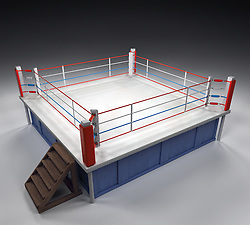 A 3d generated professional boxing ring