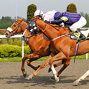 Bold Ring and M Halford winning 3.10 race