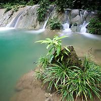 Waterfall at Las Escobas, Cerro San Gil, Guatemala