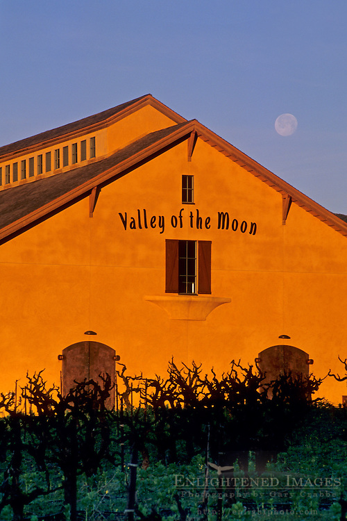 Moonset at dawn, Valley of the Moon Winery, Sonoma County, California