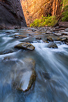 Boulders dot the Virgin River in the Narrows of Zion National Park on a cool Fall day in Southern Utah.