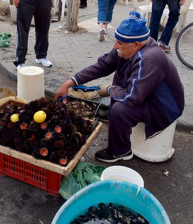 Preparing Sea Urchin for Sale