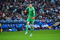 Joie Thibaut COURTOIS - 07.06.2015 - France / Belgique - Match Amical<br /> Photo : Dave Winter / Icon Sport