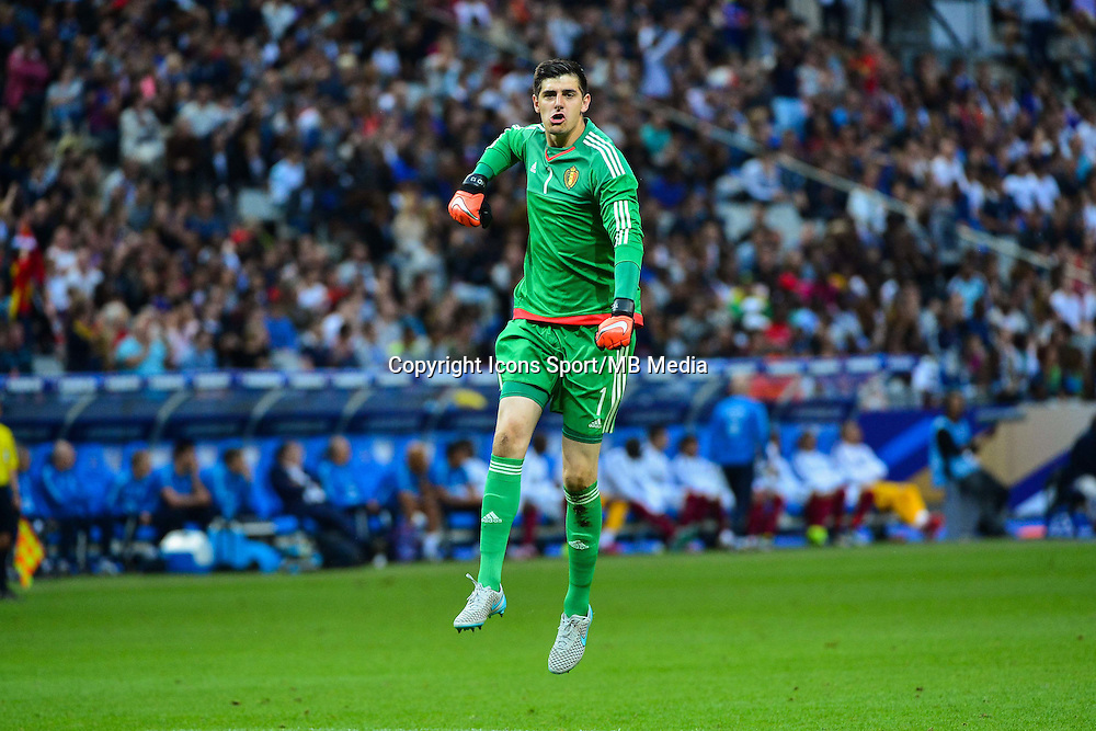 Joie Thibaut COURTOIS - 07.06.2015 - France / Belgique - Match Amical<br /> Photo : Dave Winter / Icon Sport